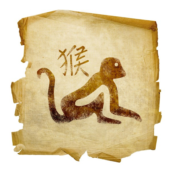 совместимость тигр и крыса гороскоп совместимости